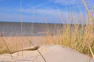 Nord_-_Plage_du_Bray-Dunes_1