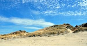 Nord_-_Plage_du_Bray-Dunes_2